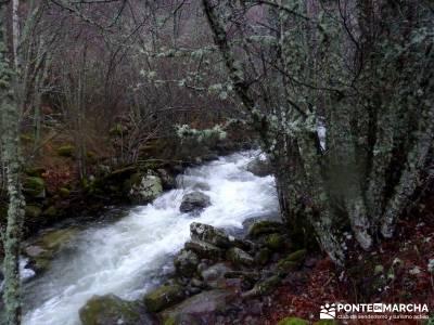 Valle del Ambroz-Sierra de Bejar - Gredos; foro senderismo madrid;rutas senderismo madrid faciles